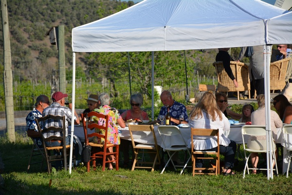 Leroux-Creek-Vineyard-Hotchkiss-CO-Vineyard-Events-E